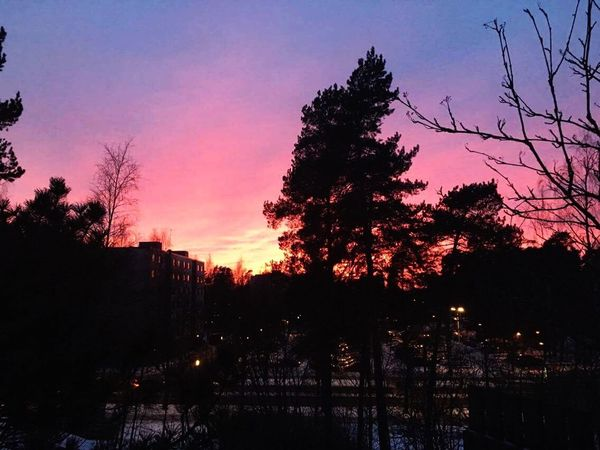 Sunset Tree Sky Silhouette Outdoors Building Exterior City Built Structure Architecture Nature Beauty In Nature No People Cityscape Day Finland The City Light