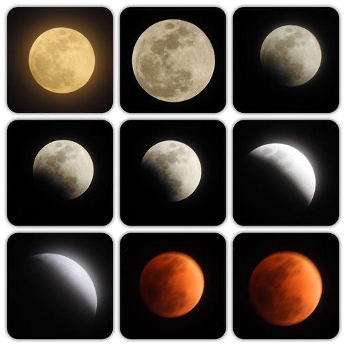 265年に1度のスーパー・ブルー・ブラッドムーン とニュースで騒いでいたので、カメラを三脚設置したらまさかの電池切れ‥‥‥2つのバッテリー充電しながら撮影🌰 ※満月が通常よりも大きく見える「スーパームーン」と、月に2度目の満月となる「ブルームーン」、そして皆既月食により月が赤っぽく見える「ブラッドムーン」がすべて同時に起こる! #スーパー・ブルー・ブラッドムーン スーパー・ブルー・プラットムーン Collage Multiple Image No People Studio Shot Black Background Night Close-up