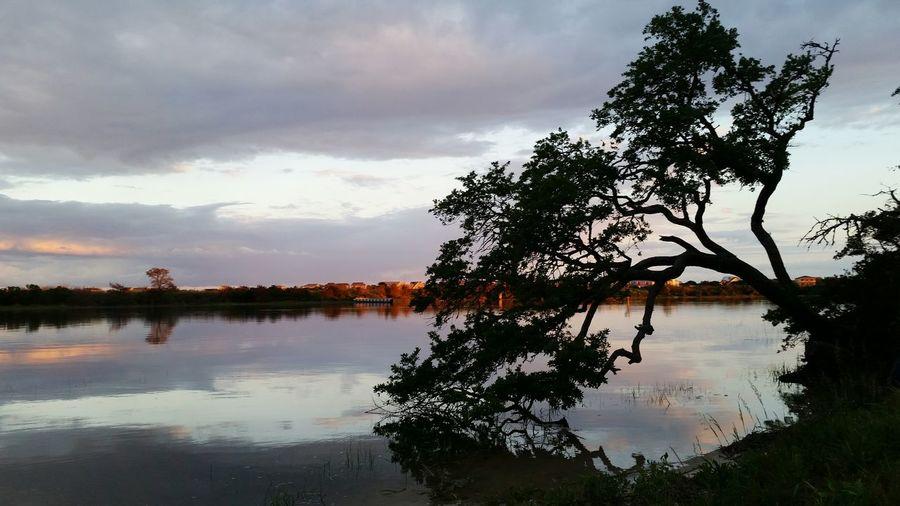 Saltlife Trees And Sky Nature Intercoastal Waterway North Carolina Sunset Harbor Nc Simplicity Beauty In Nature