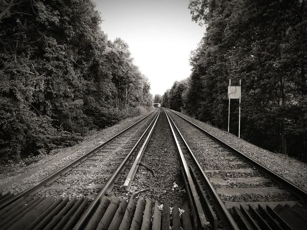 Tracks Railroad Track Transportation Rail Transportation Tree The Way Forward Day No People Straight Outdoors Sky Nature Train Tracks Trainline Black And White Photography