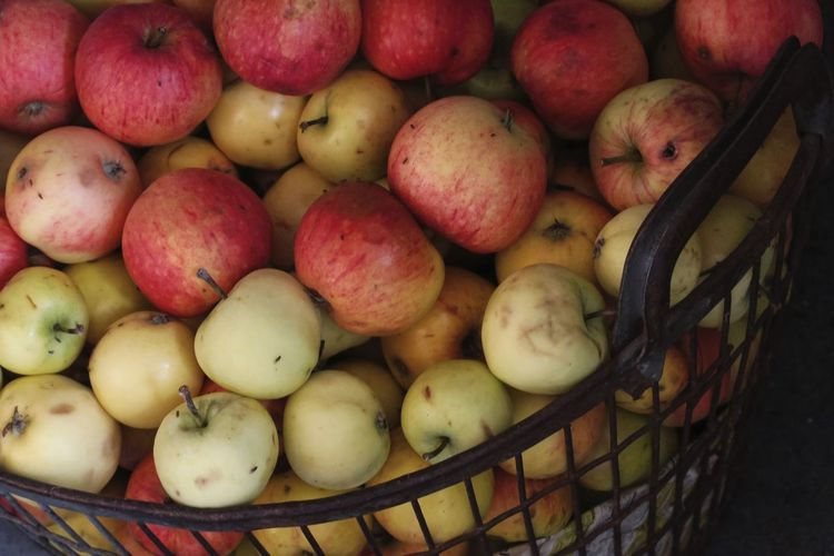 Healthy Eating Food Food And Drink Fruit Freshness Wellbeing Large Group Of Objects Container Basket Abundance No People Apple - Fruit Market High Angle View Still Life Close-up Day Market Stall Heap For Sale Organic Apple Ripe Apfelernte