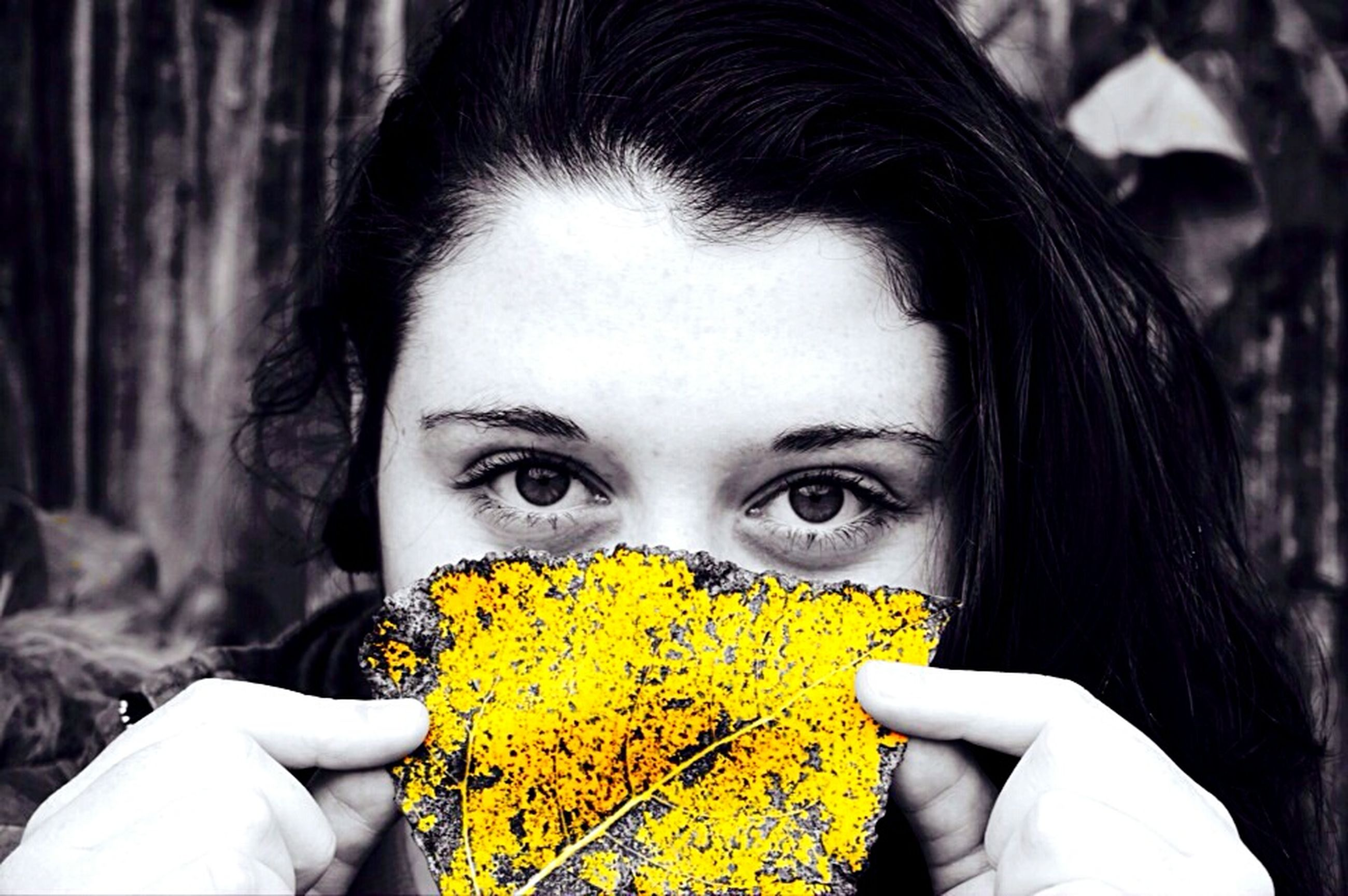 focus on foreground, headshot, flower, close-up, lifestyles, leisure activity, yellow, holding, person, young women, young adult, front view, nature, part of, outdoors