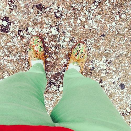 Lets take a day to ponder the world. Greenpants Artsy Photography Sperrys vineyardvines