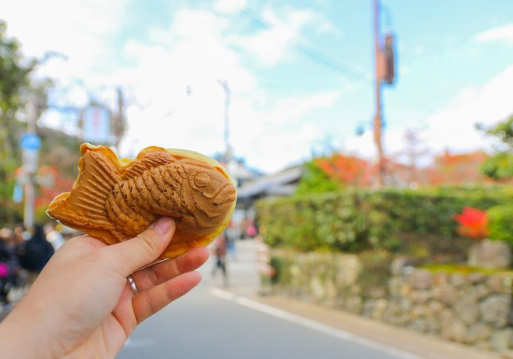 Close-up of human hand holding fish patterned food in city