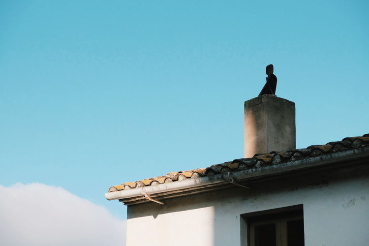 Low angle view of bird perching on building against sky