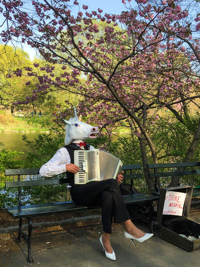 Unicorns are among us! #definenormal Adult Adults Only Branch Central Park Day Define Normal Full Length Leisure Activity Mammal Manhattan Nature New York One Animal One Man Only One Person Only Men Outdoors People Pets Real People Sitting Tree Unicorn Unıcorn Weird