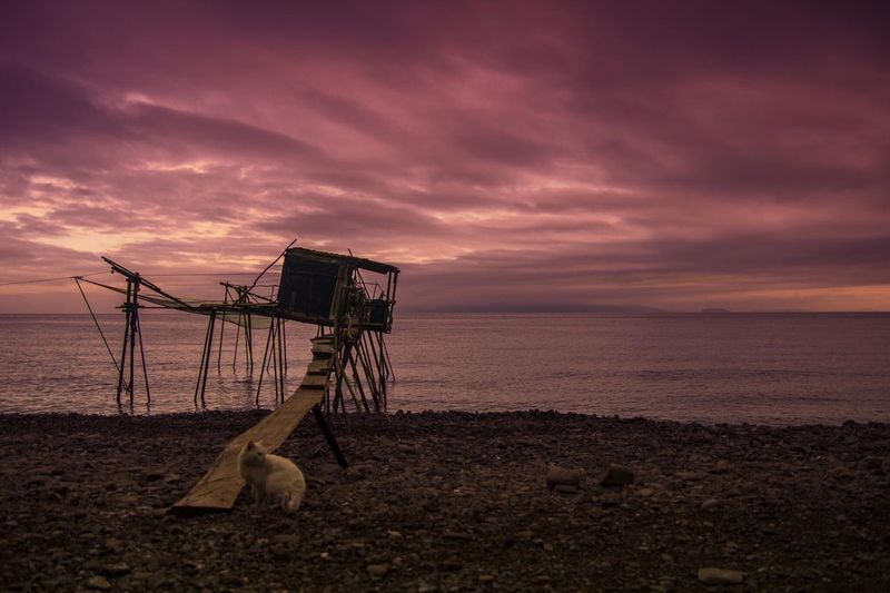 Sea Beach Water Horizon Over Water Tranquil Scene Sunset Scenics Sky Shore Safety Tranquility Dusk Cloud - Sky Cloud Beauty In Nature Lifeguard  Remote Nature Lifeguard Hut Outdoors
