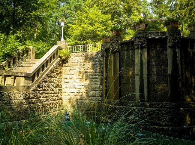 Architecture Building Building Exterior Built Structure Day Gate Growth History House Nature No People Old Outdoors Plant Ruined Staircase Steps And Staircases Stone Wall Sunlight The Past Tree Wall