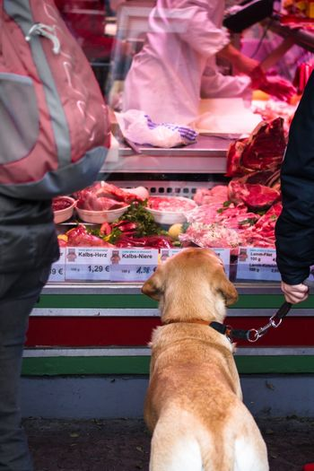 Cropped Image Of Person With Dog At Butcher Shop