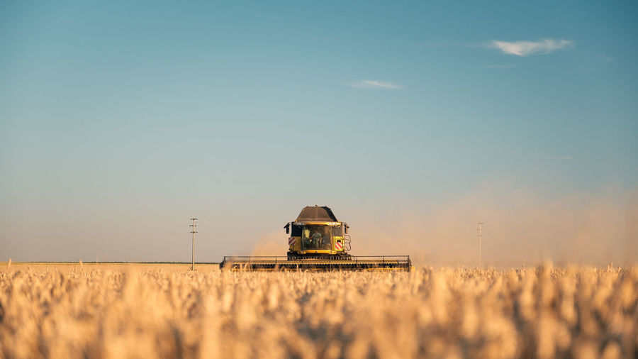 EyeEmNewHere Agriculture Beauty In Nature Cereal Plant Clear Sky Combine Harvester Crop  Day Farm Field Growth Landscape Nature No People Outdoors Rural Scene Sky