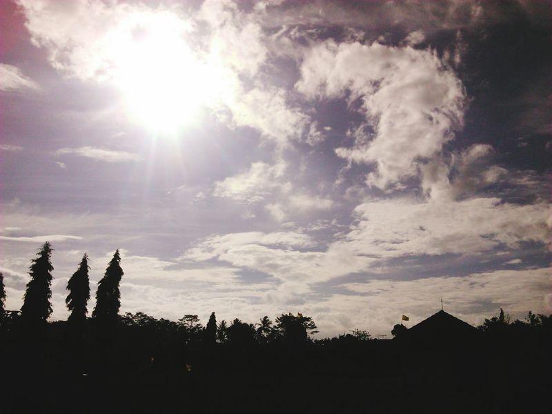 sun Tree Sunset Silhouette Sky Cloud - Sky The Great Outdoors - 2018 EyeEm Awards