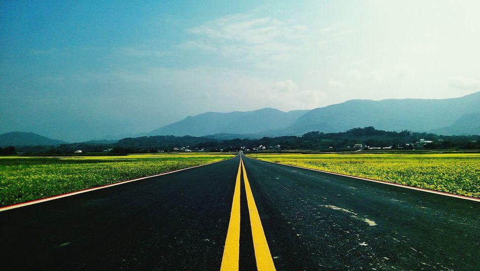 伯朗大道 台東 Landscape