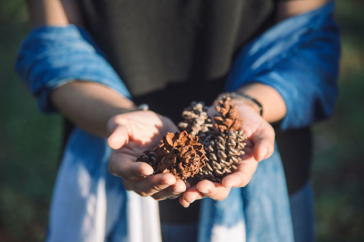 Hand holding pinecone. Conifer Cones Pine Pine Forest Rustic Sunlight Woman Blue Focus On Foreground Front View Holding Human Hand Indigo Indigo Blue Lifestyles Nature Outdoors Pine Cone Pine Tree Pinecone Holiday Moments
