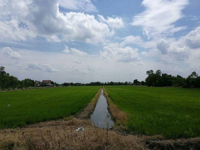 Stream amidst farm against cloudy sky
