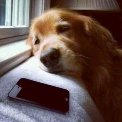 When I'm waiting for you to call every Sunday @grewalgurman :-P