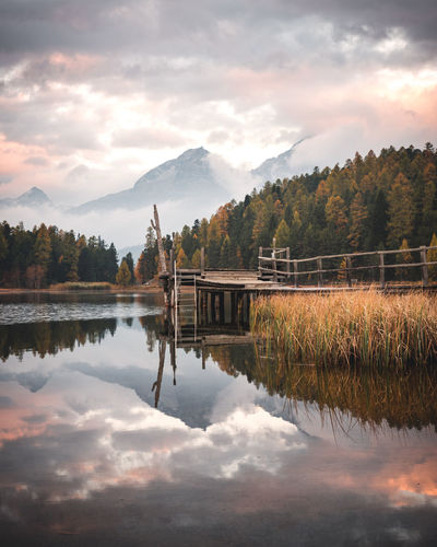 Cloud - Sky Reflection Water Sky Lake Beauty In Nature Scenics - Nature Tranquility Plant Mountain Tranquil Scene Tree Nature Waterfront Non-urban Scene No People Mountain Range Idyllic Symmetry Outdoors Engadin Switzerland Autumn Sunrise Morning
