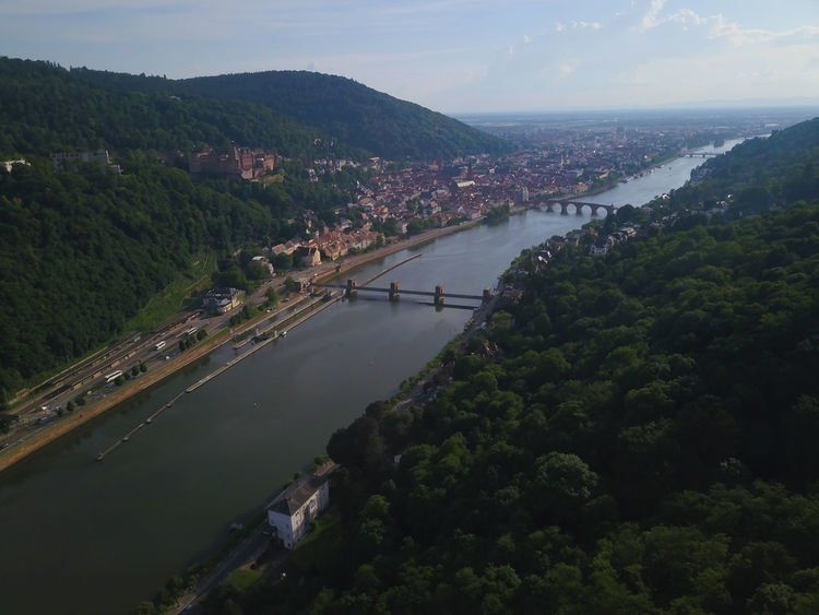 Heidelberg Castle Airview Forrest Farview Panorama Tree Politics And Government City Water Beauty Rural Scene Aerial View Business Finance And Industry TOWNSCAPE Rooftop Residential Structure Old Town Townhouse
