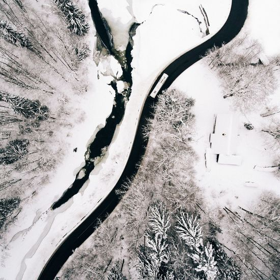 - Curves - Tree No People Nature Outdoors Day Growth Beauty In Nature Sky EyeEm Nature Lover Nature Drone  EyeEm Best Edits Road Bus Snow Winter Cold Landscape From Above  EyeEm Best Shots Beauty In Nature Pine Tree Trees Curve Cold Temperature Miles Away Flying High Lost In The Landscape