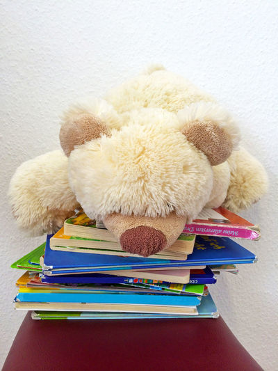 Teddy bear and books in a waiting room of a doctor Children Dentist Doctor  Family Happy Reading Room Waiting Book Child Childhood Education Health Indoors  Learning Play Playful Psychology Stack Stuffed Stuffed Toy Surgery Teddy Bear Toy Waiting Room