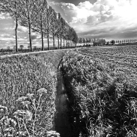 Taking Photos Enjoying Life That's Me Blackandwhite Hdr_Collection Monochrome Hello World Dordrecht