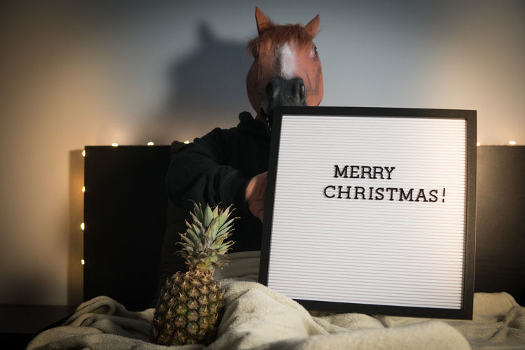 Funny absurd photo/scene of a man with horse mask holding a board in hand with Merry Christmas text, and a pineapple next to his legs Text Communication Indoors  Absurd Funny Mask Horse Merry Christmas! Merry Christmas Horse Mask Board Textured  Pineapple Party Abstract Concept Carefree Design Lights Domestic Animals Holiday Imagination Merry Christmas Hangover