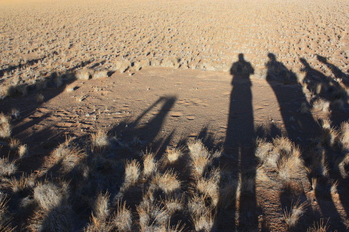 Arid Climate Day Desert Focus On Shadow Nature Outdoors People Shadow Sand Shadow Sunlight