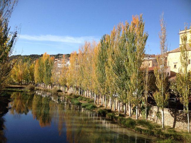 Río Tajo. Otoño Autumn