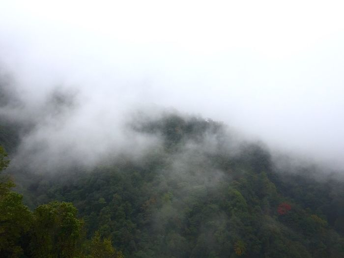 Scenic View Of Landscape In Foggy Weather Against Sky