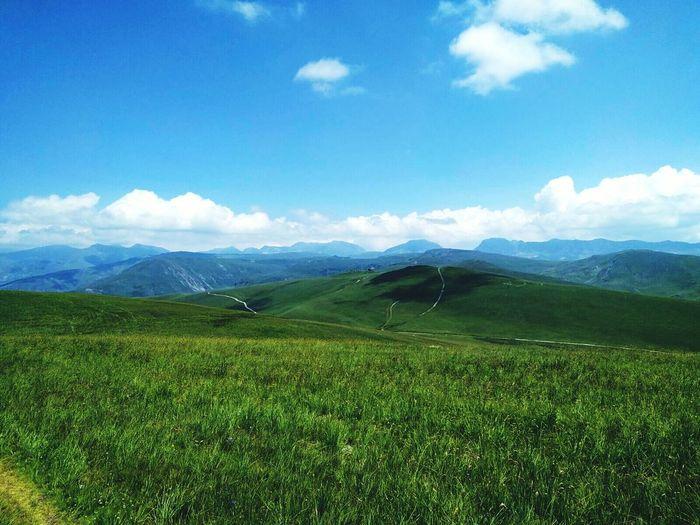 Nature Beauty Mountain Kosovo Kosova Sharrinationalpark Landscape Oneplusone