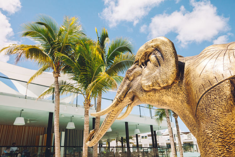 Golden elephant sculpture Cloud - Sky Dramatic Angles Elephant Golden Large Low Angle View Palm Tree Sculpture Sky Vacations