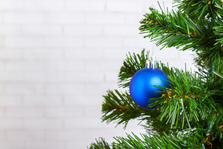 Close-up of christmas tree against wall