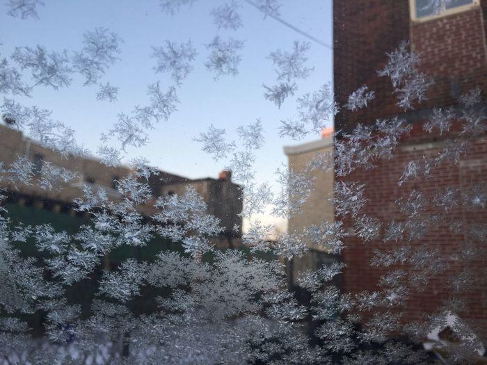 A morning's frost on my windshield DamnItsCold FreezingMyAssOff Brrrrrr