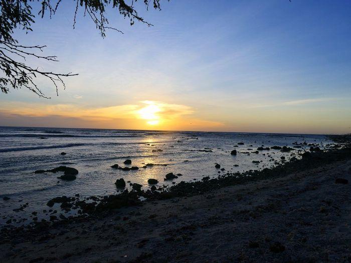 Aruba EyeEm Selects Aruba NoEditNoFilter Nature Island Panasonic Lumix Puurnatuur Water Sea Low Tide Sunset Beach Bird Sand Wave Sun Reflection Atmospheric Mood Silhouette Romantic Sky Atmosphere Majestic Moody Sky Coastal Feature Dramatic Sky Seascape Outline Sunbeam Tide Coastline