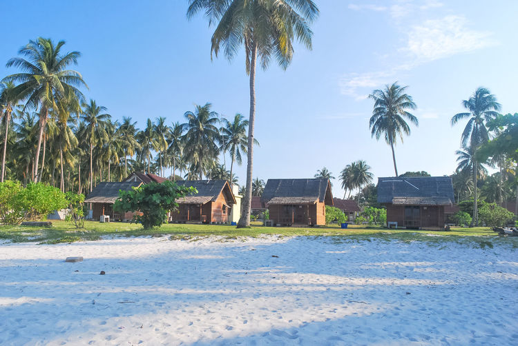 Architecture Beach Beauty In Nature Bintan  Bintanisland Blue Blue Sky Building Exterior Built Structure Bungalow Day Green Color Growth House Nature Outdoors Palm Tree Palm Trees Travel Destinations Traveling Tree Trikorabeach Tropical Tropical Paradise Tropical Plants