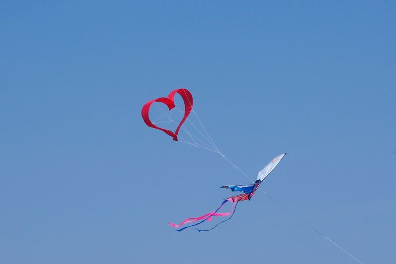 Flying heart at Peroj beach Heart Heart Shape Air Flying Heart Blue Sky Beach Low Angle View Day Blue Clear Sky Nature Outdoors Multi Colored Flying No People Sky