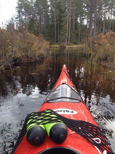 Kayaking Enjoying Life
