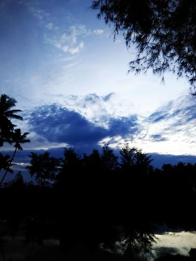 Tree Silhouette Tranquil Scene Tranquility Scenics Sky Beauty In Nature Nature Growth Calm Cloud Cloud - Sky Solitude Outline Blue Branch Outdoors Day Remote Non-urban Scene Malaysia No People Skywatchers