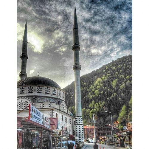 نعيش في عالم يمشي الفقير فيه أميالاً ليحصل على الطعام ''بينما يمشي الغني أميالاً ليهضم الطعام اللهم لا تستدرجْنا بالنعم ،، ولاتفاجئنا بالنقم الشمال_التركي طرابزون اوزنجول تركيا عدسة_تركيا تركيا_بعيون_عربيه North_turkey Trabzon Uzungöl Turkey Ar_istanbul Ar_trabzon Saudi_tourist Safartime Amazing_tourist Mekanim Amaken_Tourist Tourist_lover Travel_tourist Arab_travel Nature Tripsinfo Arab_photographers Turkey_shots