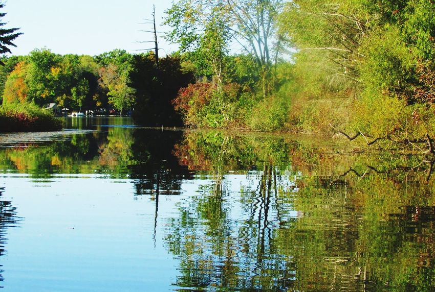 Summer Memories 🌄 Lake Lake View Trees Reflection Reflections Reflections In The Water Nature EyeEm Nature Lover Beautiful Day Beautiful View Summer2015 Michigan Pure Michigan
