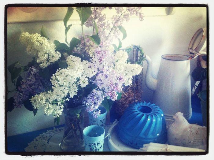Frühling in meiner Küche :0)