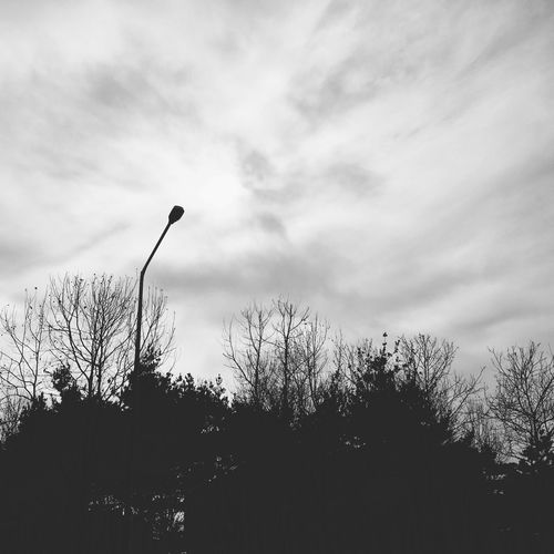 IPhoneography 일상 Iphone6s Snap Daliy Black&white Bw 흑백 Blackandwhite Sunset #sun #clouds #skylovers #sky #nature #beautifulinnature #naturalbeauty Photography Landscape [ Iphonesia Iphoneonly Vscocam VSCO