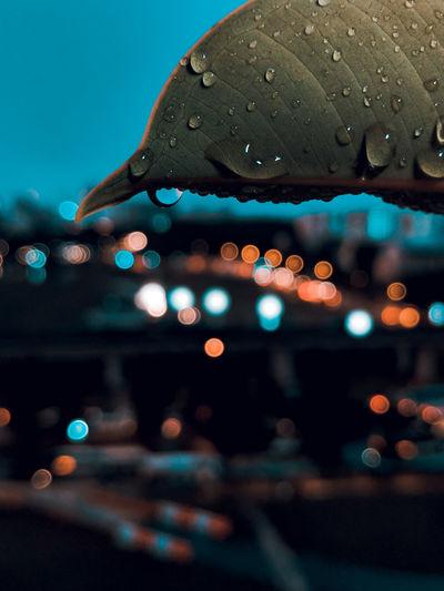 wet day City