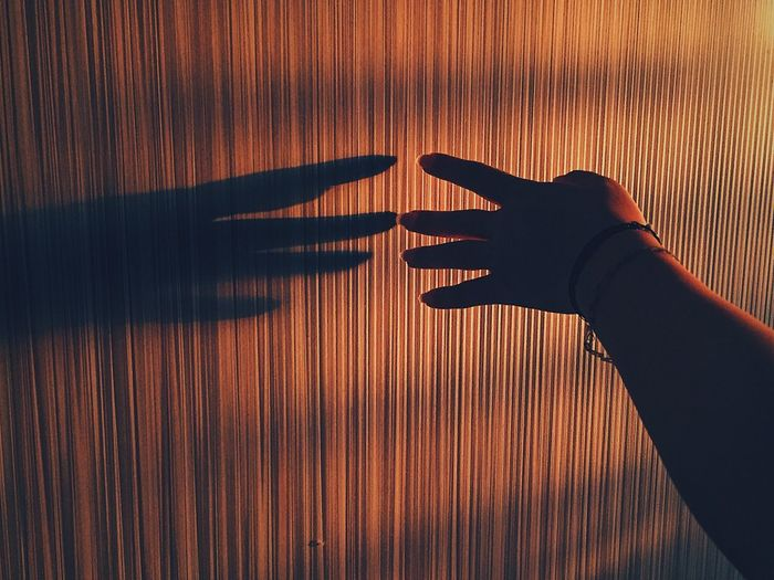 Cropped hand of person with shadow on wood during sunset