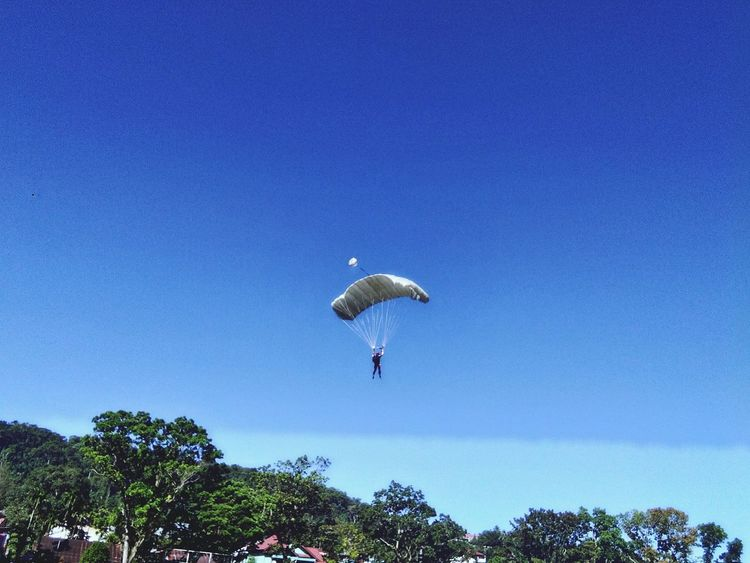 Parachute Paragliding Tree Blue UnderSea Extreme Sports Flying Sky