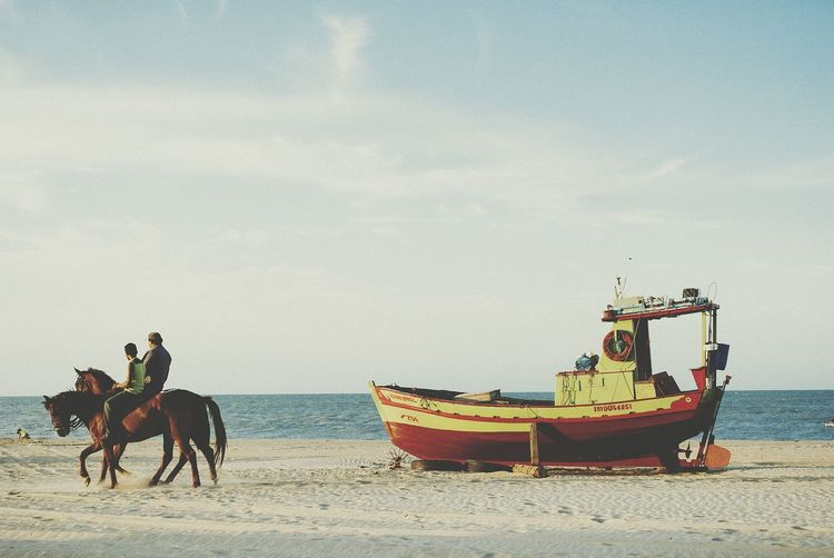 RePicture Travel Relaxing Viagem Travel Photography Voyage Traveling Paisaje Beach Photography Praia Horses