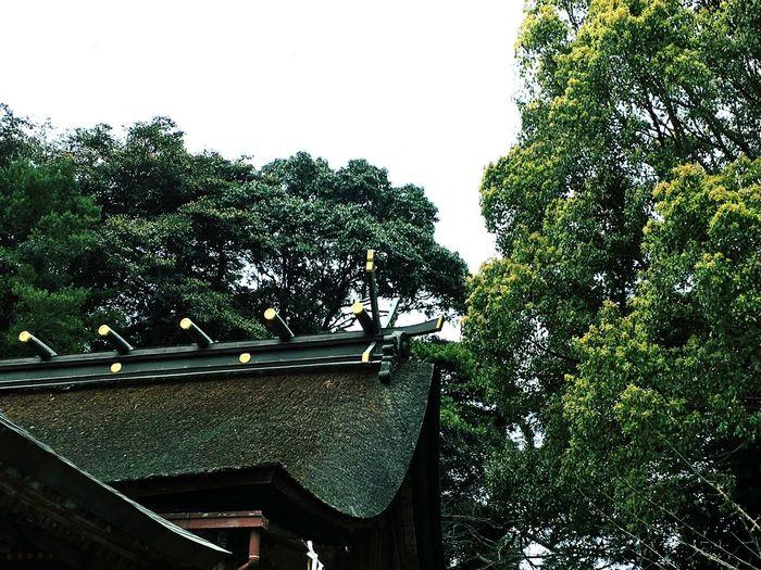 桜井神社 3 福岡県 糸島市 Taking Photos Hello World Shrine Japanese Shrine Sakurai Shrine in Itoshima City Fukuoka,Japan