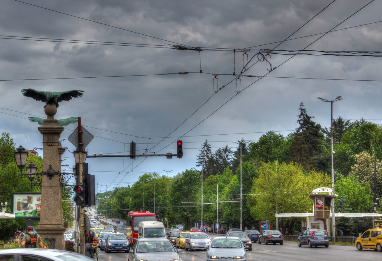 transportation, tree, car, mode of transport, cloud - sky, land vehicle, sky, cable, day, outdoors, street light, nature, electricity pylon, no people, building exterior, architecture, telephone line, city, animal themes