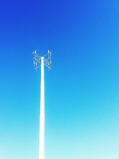 Have no idea what it is... Reach 4 The Sky Gizmo Utility Pole ? Blue Sky Sunny Winter Day Negative Space My Smartphone Life Capturing Freedom What I Value Deceptively Simple Blue Wave