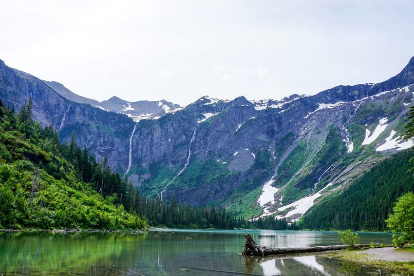 Mirror Beauty In Nature Day Environment Formation Glacier National Park Idyllic Lake Lake View Landscape Mountain Mountain Peak Mountain Range Nature No People Non-urban Scene Plant Reflection Remote Scenics - Nature Sky Tranquil Scene Tranquility Water