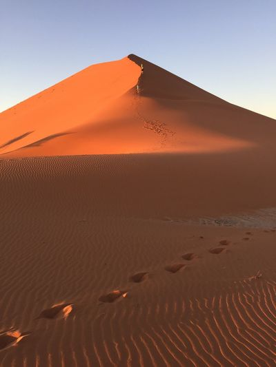 EyeEm Selects Sand Dune Sand Desert Arid Climate Nature Landscape Tranquility Scenics Outdoors Day Tranquil Scene Beauty In Nature Sunlight Clear Sky No People Travel Destinations Sky Namibia Dune45